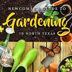 Newcomer's Guide to Gardening