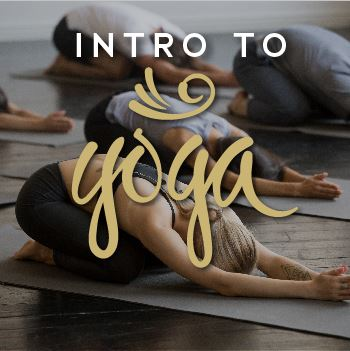 Intro To Yoga Opens in new window